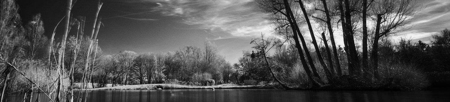 Panocover for album titled: Infrared photography
